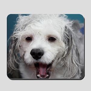 Laughing Yogi Mousepad