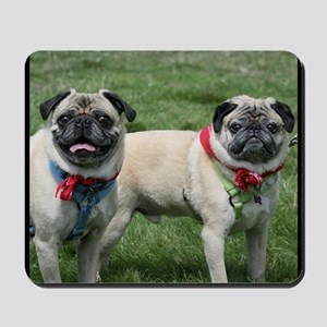 Pug Dogs Mousepad