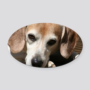 Hurry Home, I miss you Oval Car Magnet