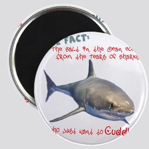 Shark Tears Magnet