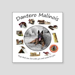 """Dantero Malinois - dogs tha Square Sticker 3"""" x 3"""""""