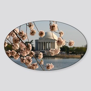Cherry Blossoms Sticker (Oval)