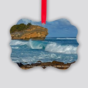 Shipwreck Beach Shorebreaks Picture Ornament