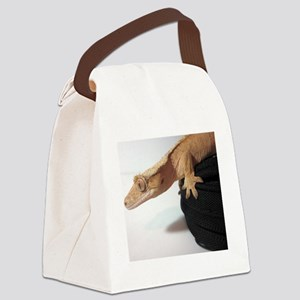 Crested Gecko Canvas Lunch Bag