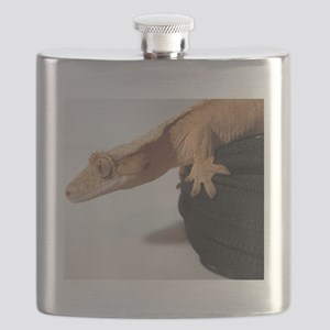Crested Gecko Flask