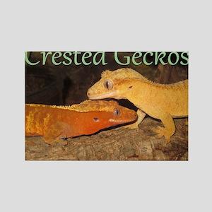 Crested Geckos Rectangle Magnet