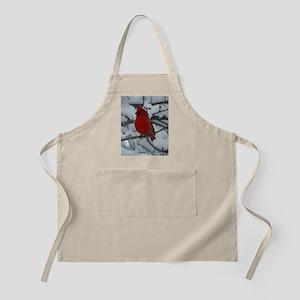 Cardinal in Snow Apron