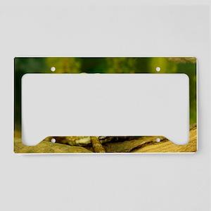 Bearded Dragon License Plate Holder