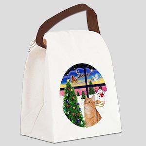 X Window - Orange Tabby 46 Canvas Lunch Bag