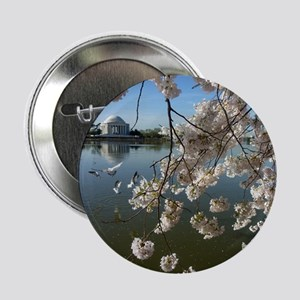 """Seagulls Fly Under Peal bloom cherry  2.25"""" Button"""