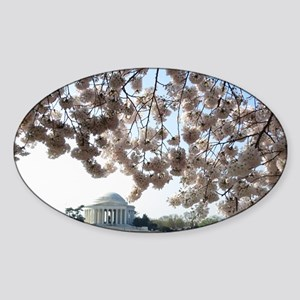 Peal bloom cherry blossom frames Je Sticker (Oval)