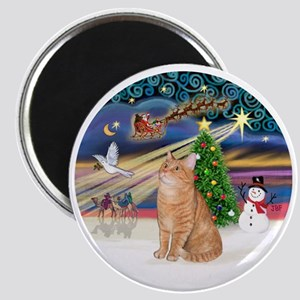 X Magic - Orange Tabby 46 Magnet
