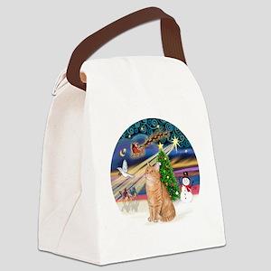 X Magic - Orange Tabby 46 Canvas Lunch Bag