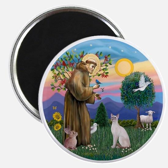 St Francis - Siamese Cat (Lilac Pt) Magnet