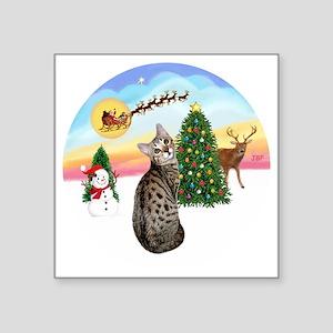 "TakeOff - Bengal Cat1 Square Sticker 3"" x 3"""
