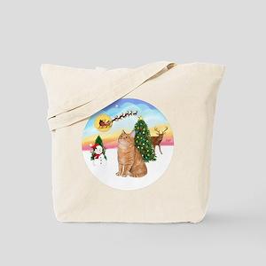 Take Off - Orange Tabby cat Tote Bag