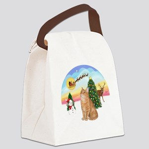 Take Off - Orange Tabby cat Canvas Lunch Bag