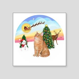 "Take Off - Orange Tabby cat Square Sticker 3"" x 3"""