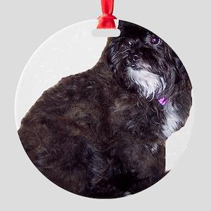 Shih Poo Love Round Ornament
