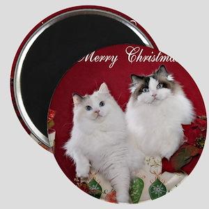 Ragdoll Cat Coaster Magnet