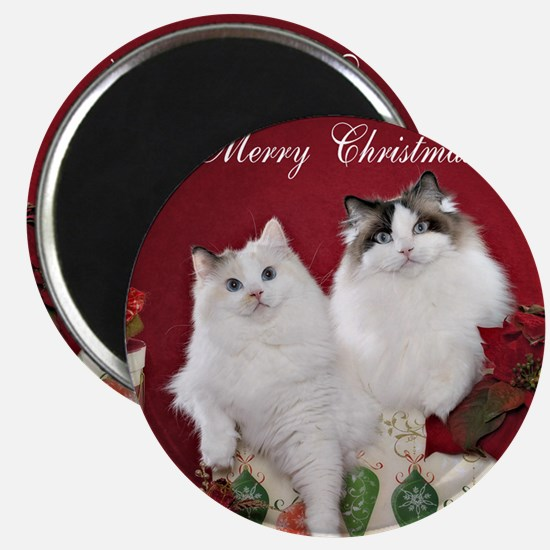 Ragdoll Cat Coaster Magnet