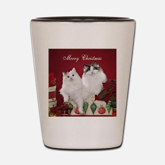 Ragdoll Cat Coaster Shot Glass