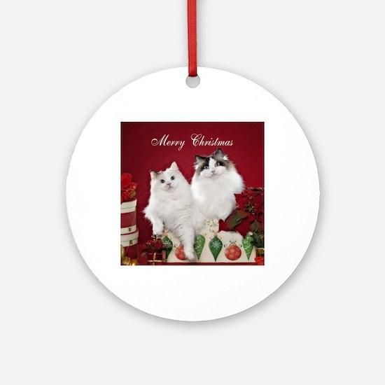 Ragdoll Cat Coaster Round Ornament