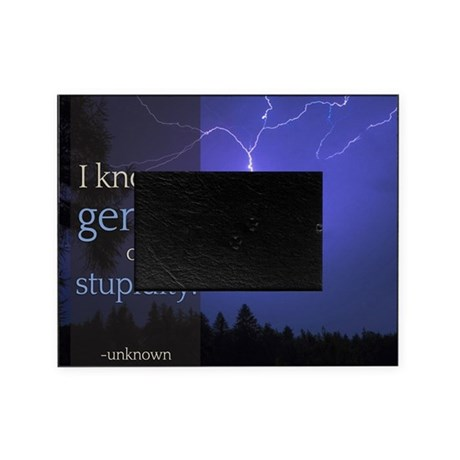 Stupid Quotes- I know a genius of st Picture Frame