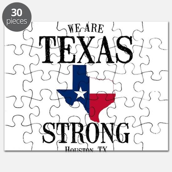 Houston TX Puzzle