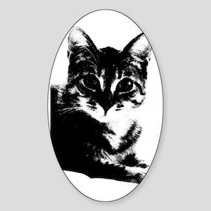 Doctor Jones Nook Sleeve Sticker (Oval)