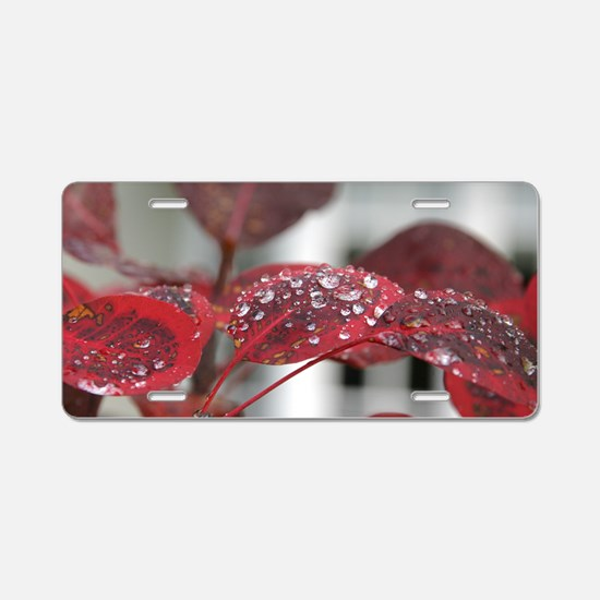 Dew on red leaves, Aluminum License Plate