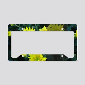 LDS Quotes- If life gets too  License Plate Holder