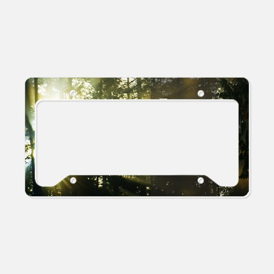 LDS Quotes- Feast upon the wo License Plate Holder