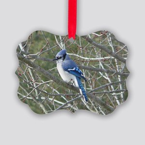 Bluejay Picture Ornament
