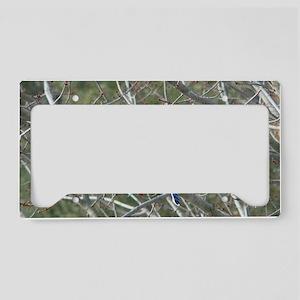 Bluejay License Plate Holder