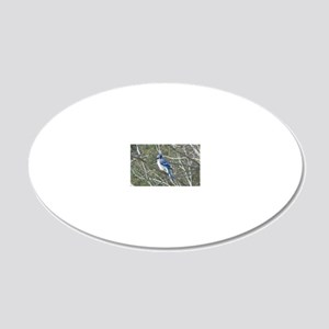 Bluejay 20x12 Oval Wall Decal