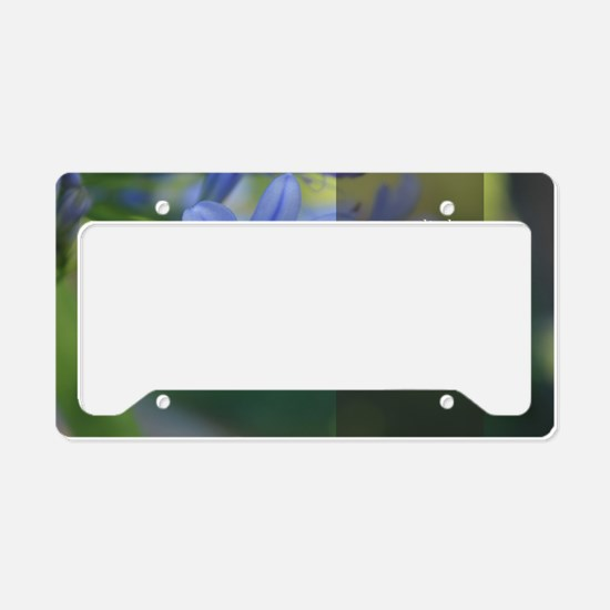 LDS Quotes- Try a little hard License Plate Holder