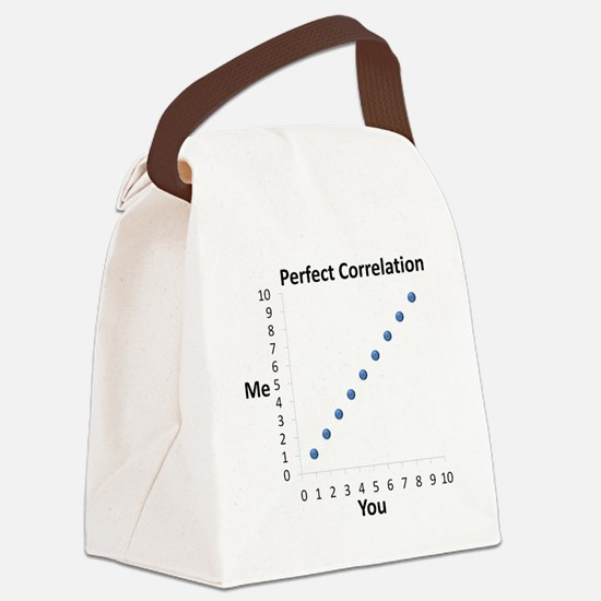 Perfect Correlation Canvas Lunch Bag