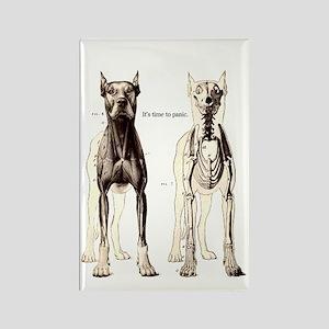 Sarcatic Dog Skeleton Rectangle Magnet