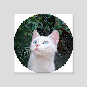 "Klea the Beautiful Square Sticker 3"" x 3"""