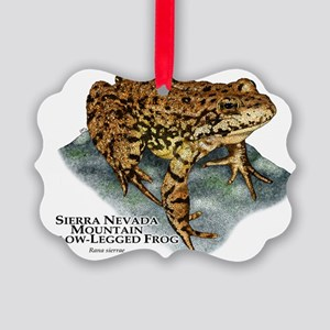 Sierra Nevada Yellow-legged Frog Picture Ornament