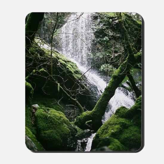 Cataract Falls - Mt Tamalpais - Marin, C Mousepad