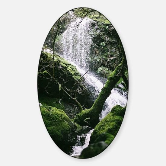 Cataract Falls - Mt Tamalpais - Mar Sticker (Oval)