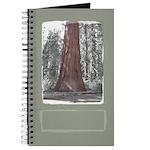 Sequoia Tree Journal