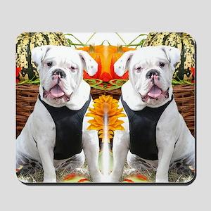 Halloween bulldog Mousepad