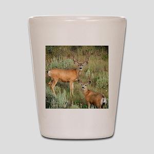Mule deer velvet Shot Glass