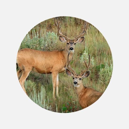 """Mule deer velvet 3.5"""" Button"""