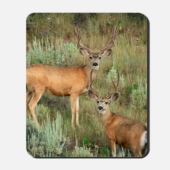 Mule deer velvet Mousepad