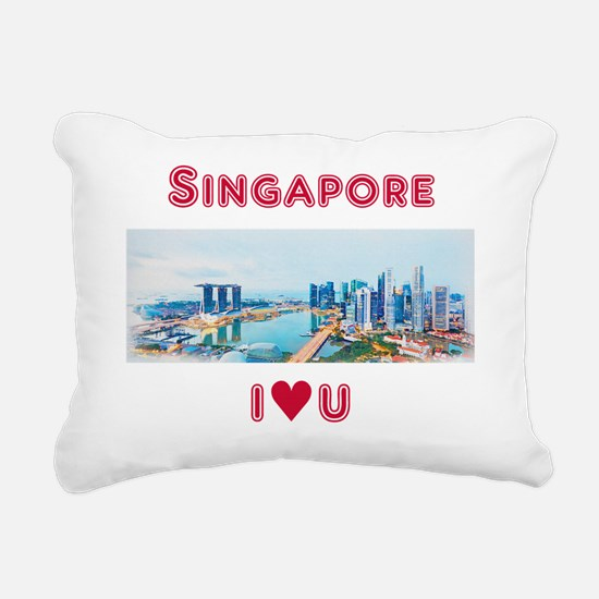 Singapore Flyer Pillows Singapore Flyer Throw Pillows