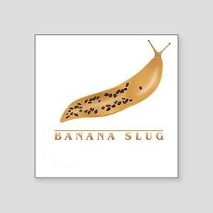 "Banana Slug Square Sticker 3"" x 3"""